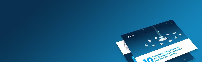 Hero thankyou 10companies product to platform Ebook
